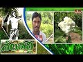 Jangaon District Farmer Earn Profits By Jasmine Flower Farming-Exclusive