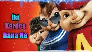 İki Kardeş - Bana Ne - Alvin & Sincaplar