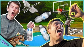 MISS The BOTTLE FLIP, Eat DISGUSTING BUGS! Ft. That's Amazing