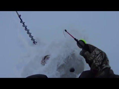 рыбалка северный мост