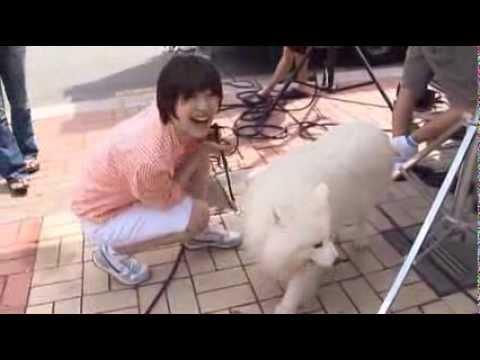 Minho & Sulli (Minsul scenes) / with Sangchu TTBY Making of DVD