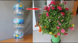 Bà nội trợ hiện đại tái chế chai nhựa thế này   Modern housewife recycles plastic bottles like this