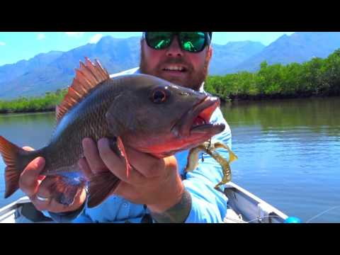 Jim's Fishing Ep7 Hinchinbrook
