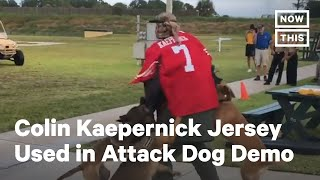Navy Investigates Use of Colin Kaepernick Jersey in Dog Attack Demonstration | NowThis