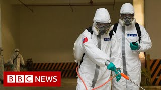 Coronavirus: Largest study suggests elderly and sick are most at risk - BBC News
