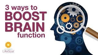 3 Ways to Boost Brain Function   John Douillard's LifeSpa