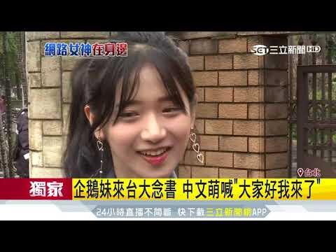 企鵝妹來台大念書 中文萌喊「大家好我來了」│三立新聞台