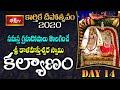 సమస్త గ్రహదోషాలు తొలగించే శ్రీ కాళహస్తీశ్వర స్వామి కల్యాణం | 14th Day BhakthiTV Karthika Deepotsavam