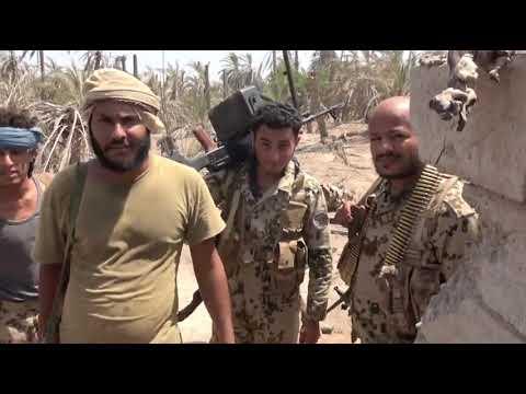 الحديدة.. سحق محاولة تسلل جديدة للحوثيين في بيت الفقية