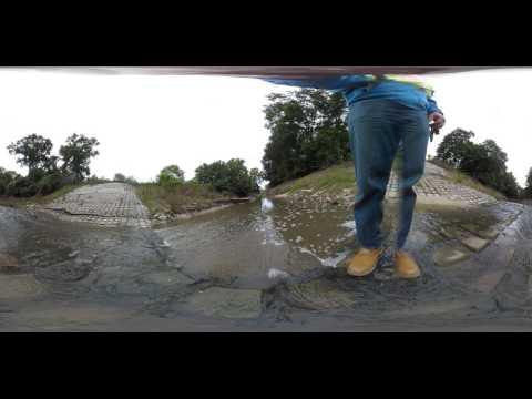 Donkey Farm VR
