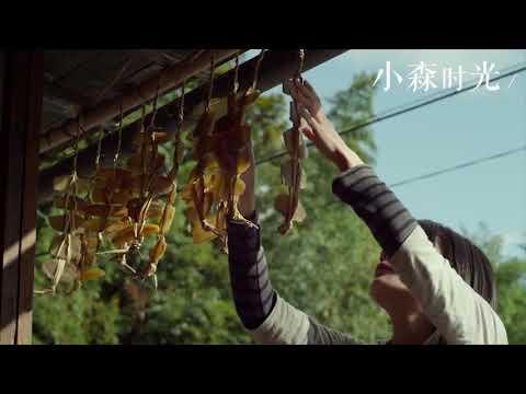"""日本治愈小清新电影""""小森林""""春夏秋冬桥本爱合辑篇"""