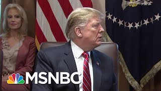 House Democrats Vows To Fight President Donald Trump's National Emergency | Hardball | MSNBC