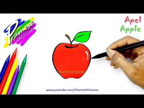 Cara Mudah Menggambar Buah Mangga Videomoviles Com