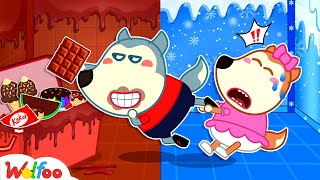 Cold vs Chocolate Room - Wolfoo Learns to Share - Kids Stories About Wolfoo Family   Wolfoo Family
