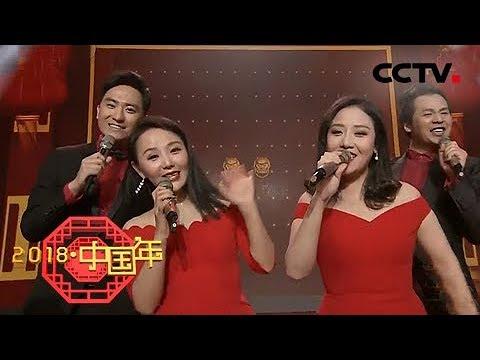 《2018中国年》 20180218 明星大咖携手中文国际主持人嗨翻全场 给你好看 | CCTV中文国际