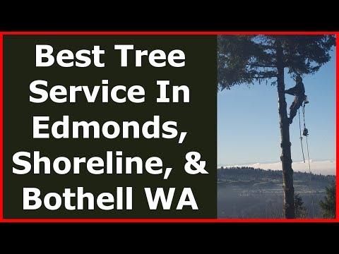 Saunders Tree Service LLC