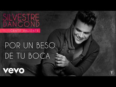 Silvestre Dangond - Por un Beso de Tu Boca (Audio)