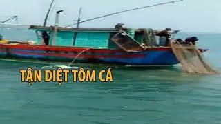 Cận cảnh tàu cá tận diệt thủy sản bằng xung điện, lưới giã cào