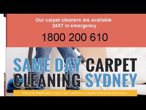 Same Day - Carpet Cleaning