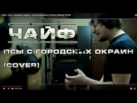Алексей Бирюков (The Price of Memories) - Псы с городских окраин (ЧайФ) COVER