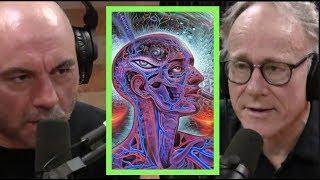 Joe Rogan | Ayahuasca is Amazonian Science w/Graham Hancock