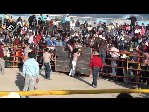 Jaripeo Plaza de Toros Mexico Cicero il  sep 5 11