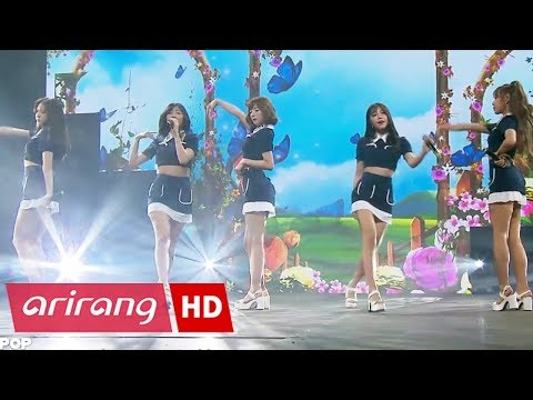 [K-POP Night out in Warsaw] Apink(에이핑크) _ FIVE