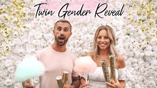 TWINS GENDER REVEAL | THE CARTER TWINS | Lucy Jessica Carter