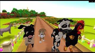 Animals Running Race Videos For Kids