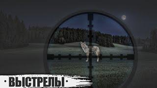 Выстрелы по волкам