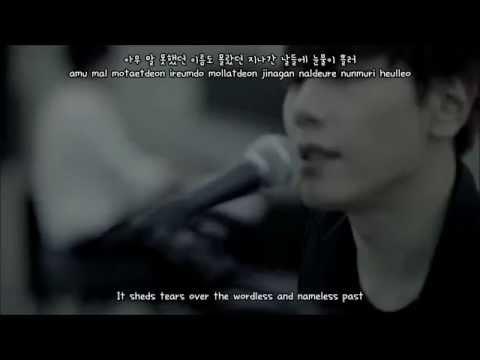 [eng   han   rom] Wild Flower(야생화) - Park Hyo Shin(박효신) MV