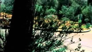 Starsplash feat. Daisy Dee - Fly Away