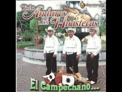 TRIO ANDARES DE LAS HUASTECAS-EL Campechano.wmv