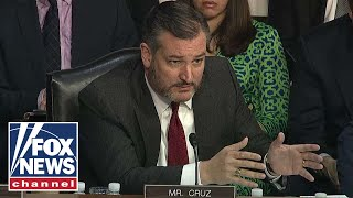 Cruz on spying: This wasn't Jason Bourne, this was 'Beavis and Butt-head'