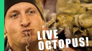 Would you eat a live octopus? - South Korea