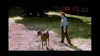 The Animal Movie TV Spot (2001) Rob Schneider