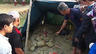 (VTC14)_Thực hư người dân xúc đất phát hiện mộ cổ 300 năm
