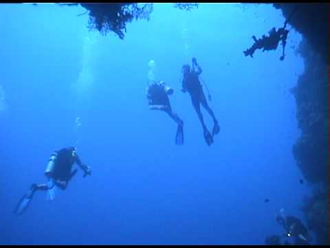 Malibu Divers Palau Scuba Diving Trip