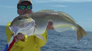 Deep Dropping with the Mexican Gulf Fishing Company Preview