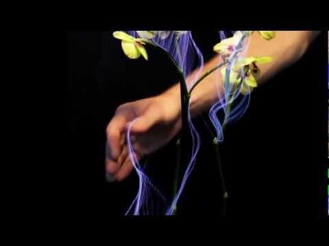 """""""Botanicus Interacticus"""" - SIGGRAPH 2012 Exhibition"""