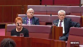 A-G George Brandis gives Pauline Hanson a dressing down over burqa stunt