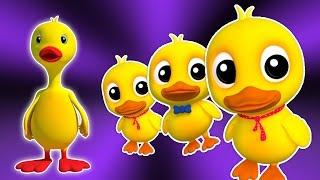 Cinq petits canards | Cartoon pour les enfants | Compilation | Populaire Comptine
