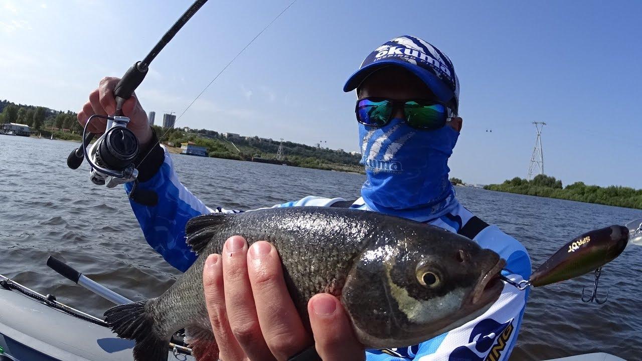 8 лучших мест для рыбалки в черте Нижнего Новгорода