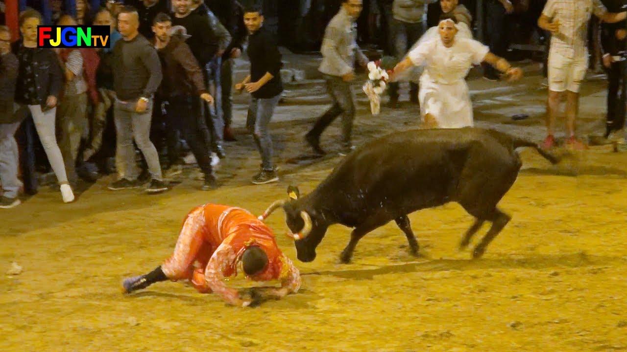Vacas Enfundadas Hnos Barberan 25-05-2019 Almassora (Castellon) Bous Al Carrer
