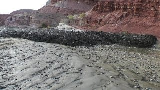 Amazing Flash Flood / Debris Flow Southern Utah HD