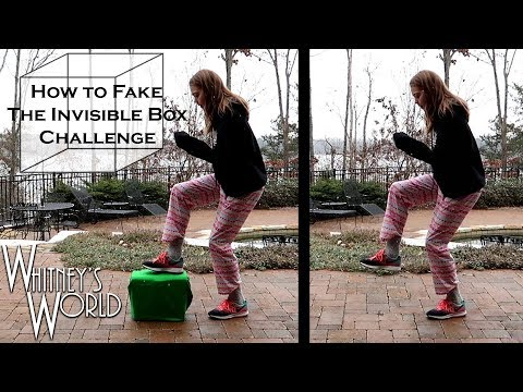 How to Fake the Invisible Box Challenge | Whitney Bjerken