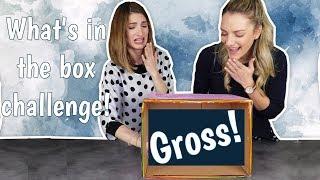 Τι έχει μέσα το κουτί; | Marinelli
