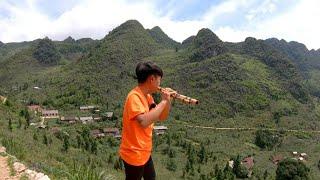 Cậu bé người H'mông thổi sáo cực phiêu ở Cao Nguyên Đá Đồng Văn