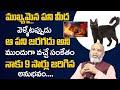 ఆ పని జరగదు అని ముందుగా వచ్చే సంకేతం | Astrologer Nanaji Patnaik About Jyothisha Sastram | TSW