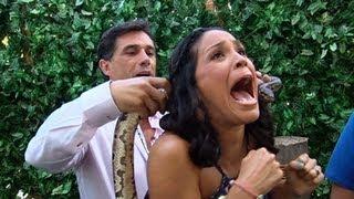 Karla casi se desmaya cuando le pusieron una pitón en el cuello - Despierta América